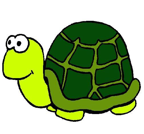 El pez y la tortuga