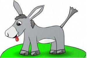 burro | teOcio
