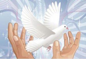 educación para la paz | teocio